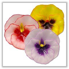 Pansy Flower Floating Candles - Pastel - 3¼