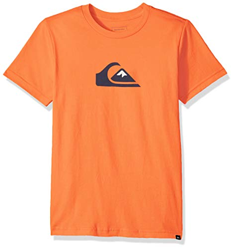 - Quiksilver Boys' Big MW Logo TEE, Flamingo L/14