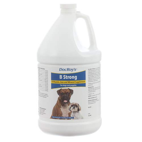 Revival Animal Health Doc Roy's B Strong - Gallon Vitamin and Mineral Support for Dogs and Puppies