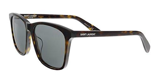 Saint Laurent SL 205/K 002 Havana Square - Sunglasses Laurent Saint