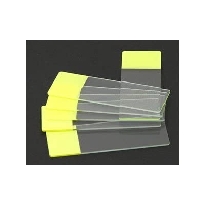 SEOH Yellow Colored End Label Microbiology Microscope Slides (pk of 72): Industrial & Scientific