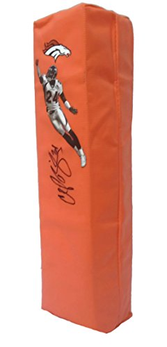 Broncos Pro Denver Football Autographed (Denver Broncos Champ Bailey Autographed Hand Signed Full Size Photo Football Touchdown End Zone Pylon with Proof Photo of Signing and COA- University of Georgia Bulldogs)