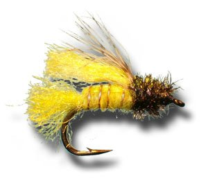 Z-Wing Caddis Emerger - Amber Fly Fishing Fly - Size 14 - 6 Pack
