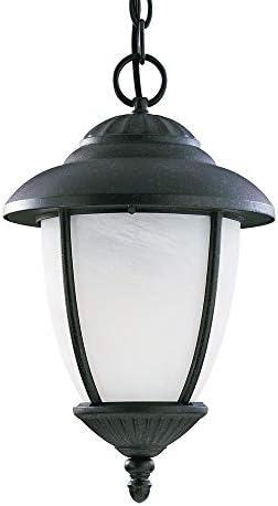 Sea Gull Lighting 60048-185, Yorktown Cast Aluminum Outdoor Ceiling Lighting, 75W, Iron