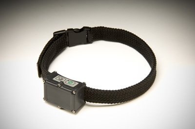 RoamEO GPS Collar