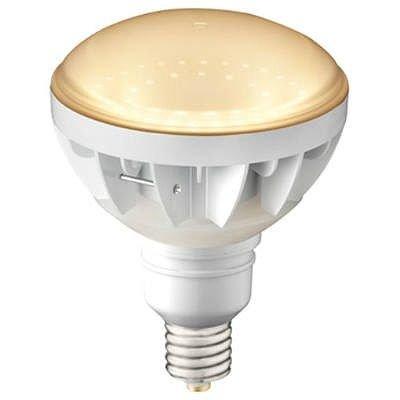 水銀ランプ形LED白 B07RZPNXRF