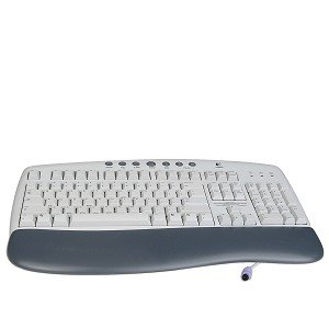 (Logitech Internet 104-Key PS/2 Multimedia Keyboard (Beige))