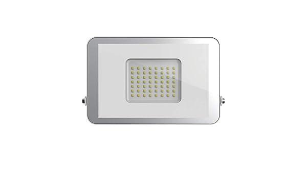 Proyector led luxe blanco 30W fría: Amazon.es: Iluminación