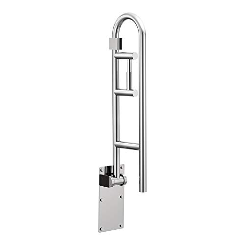Ada Grab Bar - Moen R8962FD Home Care 30-Inch Flip-Up Bathroom Grab Bar with Toilet Paper Holder, Stainless