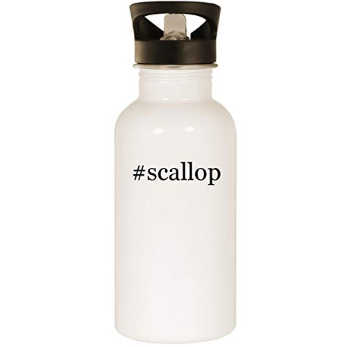 #scallop - Stainless Steel Hashtag 20oz Road Ready Water Bottle, White