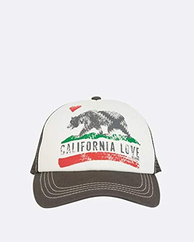 Billabong Men's Pitstop Trucker Hat, Charcoal, One Size