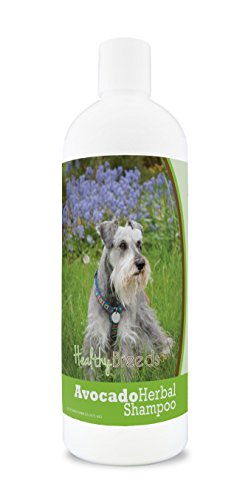 Healthy Breeds Herbal Avocado Dog Shampoo for Dry Itchy Skin for Miniature Schnauzer  - OVER 200 BREEDS - For Dogs with Allergies or Sensitive Skin - 16 oz