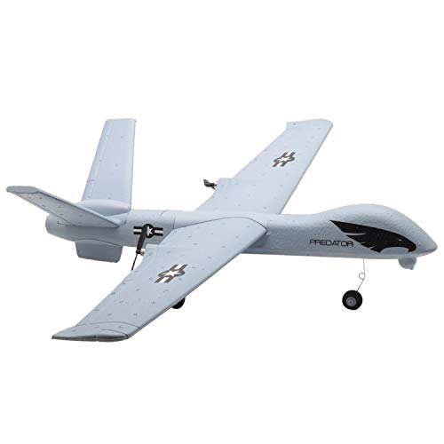 TOOGOO Z51 Predator 660mm Wingspan 2.4G 2CH Glider RC Airplane RTF Built-in DIY US (Predator Rc Plane)