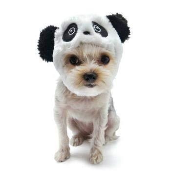 Panda Dog Hat by Dogo