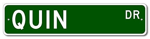 Quin Drive Street Sign  Custom Quin Family Last Name Sign   Green   4 X18