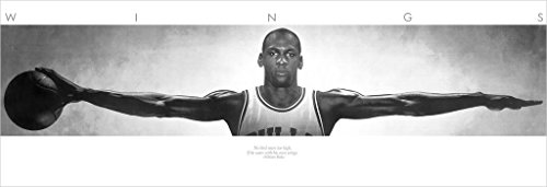 Michael Jordan (Wings Door) Sports Poster Print (21in x 62in) (Basketball)