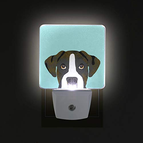 - Brindle Boxer Cute Dog Mint LED Night Lights with Auto Dusk to Dawn Sensor, Plug-in Warm White Wall Lights for Kids Room