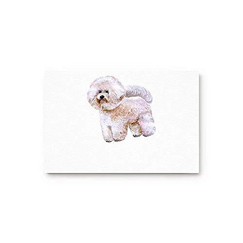(YGUII Dog Lover Decor Entryway Door Rug Floor Mat 16X23.6in (40x60cm) Bichon Puppy Illustrations Doormat Indoor Door Shoe Scraper Rubber Entrance Mat for Home)