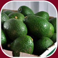 24 Fresh California Hass Avocados ()