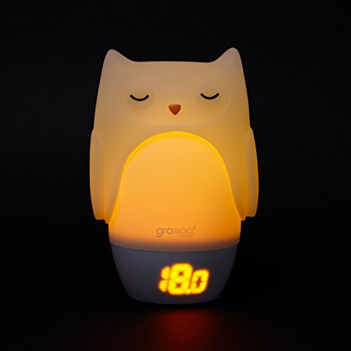 The Gro Company Groegg 2 Room Thermometer And Nightlight