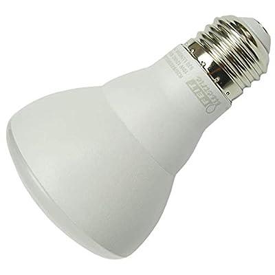 Feit Electric 42544 - LED/R20/10W/65K/POOL/12V R20 Flood LED Light Bulb
