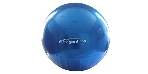 Ergonflow Updated 09/2018 with New Material Exercise Ball Yoga Ball Swiss Ball Anti Burst Material Rated for 1200 lbs Comes with Pump