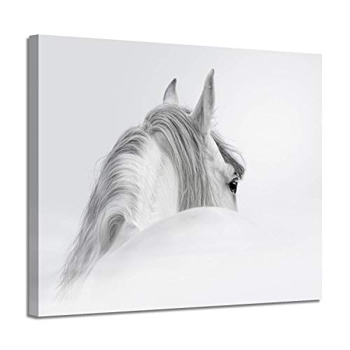 (White Horse Canvas Wall Art: Animal Artwork Painting Picture for Bedroom ( 24'' x 18'' x 1 Panel ))