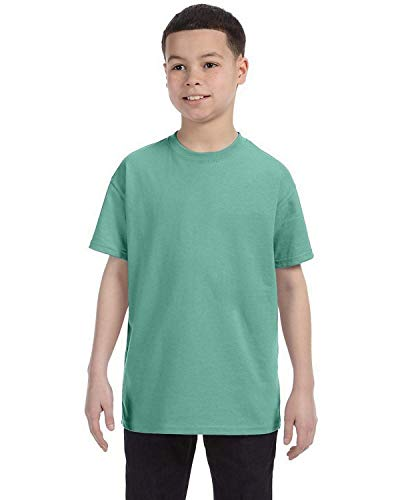 Hanes Authentic TAGLESS Kid's Cotton T-Shirt,Clean Mint,Small