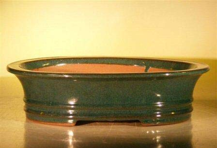 Bonsai Boy's Green Ceramic Bonsai Pot - Oval 14 0 x 11 5 x 4 0