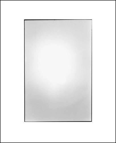 Zoe Leonard: Available Light PDF
