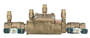 In-line Double Check Valve Assemblies 1'' Fpt by Watts