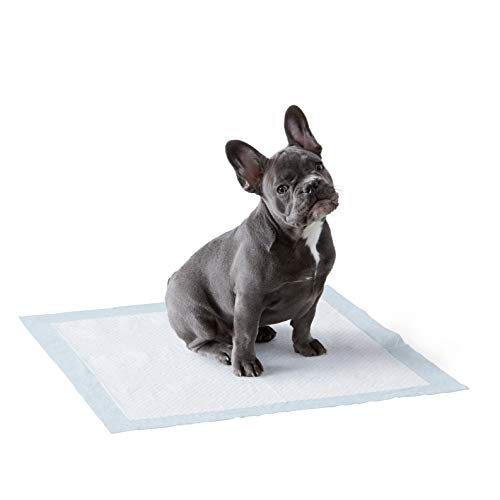 Amazon Basics Dog and Puppy Leak-proof 5-Layer