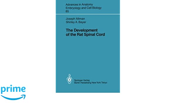 The Development of the Rat Spinal Cord (Advances in anatomy ...