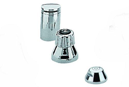 Seabury 2-Handle Wideset Bidet Faucet