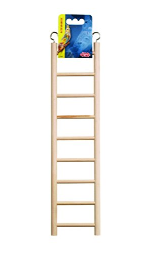 Living World Wooden Ladder Step