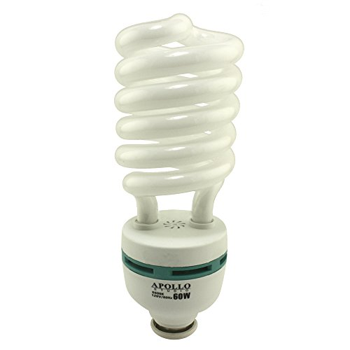 Apollo Studio® 60 Watt CFL Compact Fluorescent Light Bulb - Color Spectrum 5500K ()