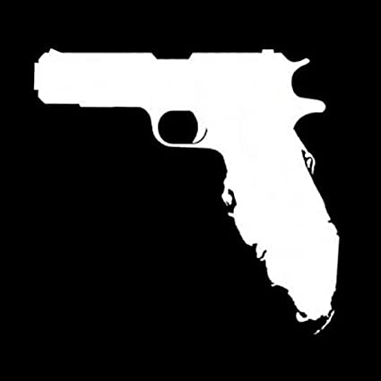 Image result for florida shaped like a gun