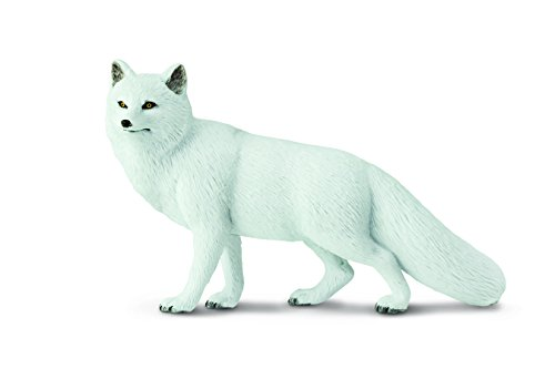 Safari Ltd. Arctic Fox – Realistic Hand Painted Toy Figurine Model – Quality Construction from Phthalate, Lead and BPA Free Materials – For Ages 3 and Up (Fox White Arctic)