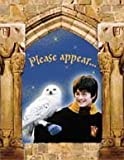 Harry Potter and the Sorcerer's Stone Party Invitations