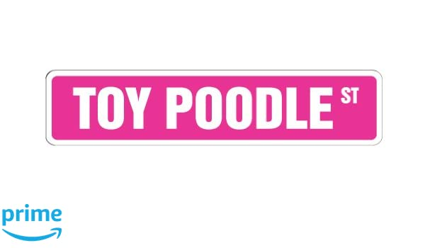 "Indoor//Outdoor TOY POODLE Street Sign dog lover great lover family  18/"" Wide"
