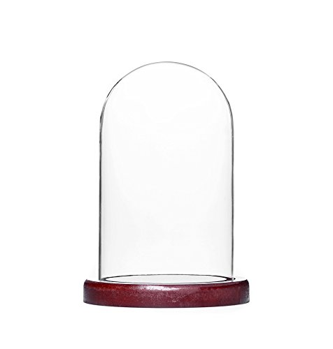 mooinjoinin Clear Glass & Wood Cloche Bell Jar Centerpiece/Tabletop Display Case (small)