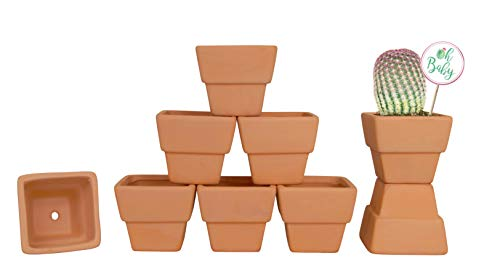 My Urban Crafts 9 Pcs - 3 inch Square Small Terra Cotta Pots Mini Clay Pots Terracotta Flower Pots with Drainage Holes Small Ceramic Pottery Planters Nursery Pots for Cacti Succulent Plants and Favor ()