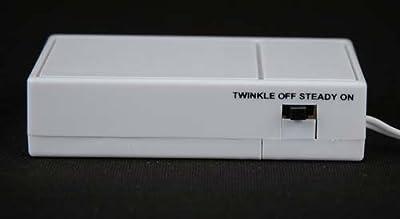 Novelty Lights 20 Light Battery Operated LED Christmas Mini Light Set, White Wire, 8' Long