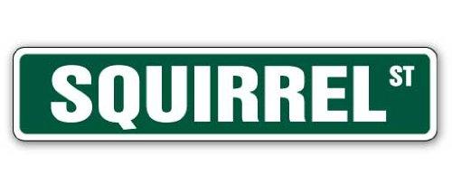 SQUIRREL Street Sign xing crossing nuts roadkill hunt   Indoor/Outdoor   30