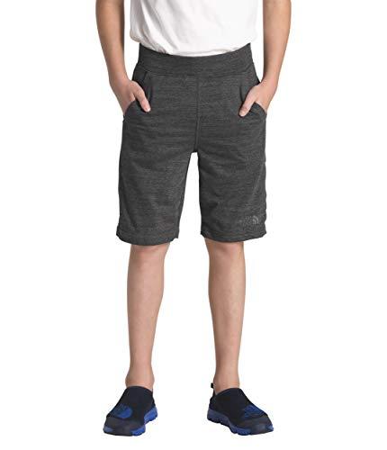 (The North Face Kids Boy's Tri-Blend Shorts (Little Kids/Big Kids) TNF Black Heather Medium)
