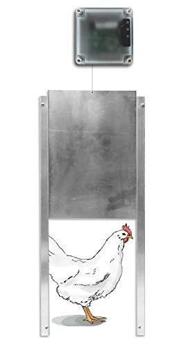 Automatic Chicken Coop Door Opener + Door - Light Sensing - Indoor/Outdoor - Battery Powered (6 Months) (Pack of 1) (Best Chicken Coop Kit)