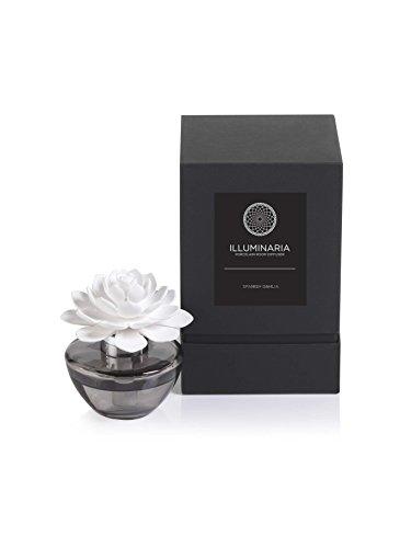 Zodax Illuminaria Porcelain Diffuser, Spanish Dahlia Fragrance (Zodax Diffuser)