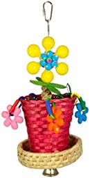 Super Bird Creations Flower Pot Toy for Birds