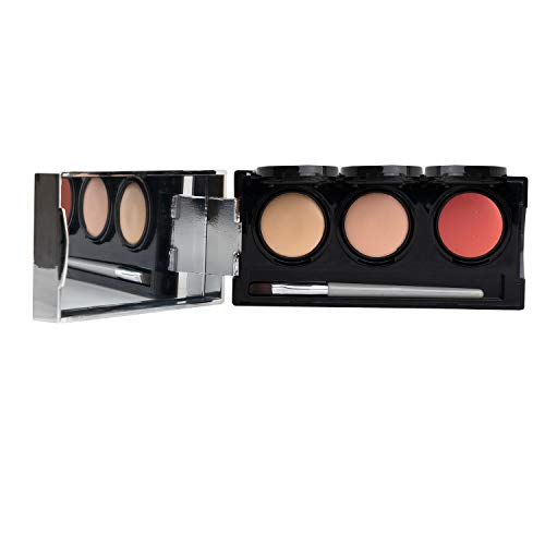 Tattoo Cover Up Makeup, Bruise Concealer, Waterproof, Smudge proof, 3 colors + brush, by Dermaflage, 6.9g/.24oz