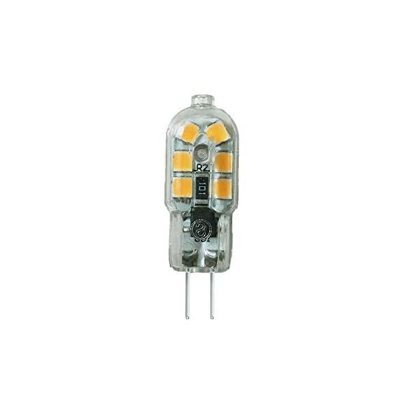Wulun, lampadine a LED G4, 2 W, CA 220 V-240 V, lampade a LED con luce bianca calda, 3.000 K, lampada alogena… 1 spesavip